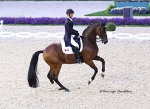 Chris von Martels & Divertimento's Aachen CDI4* Debut
